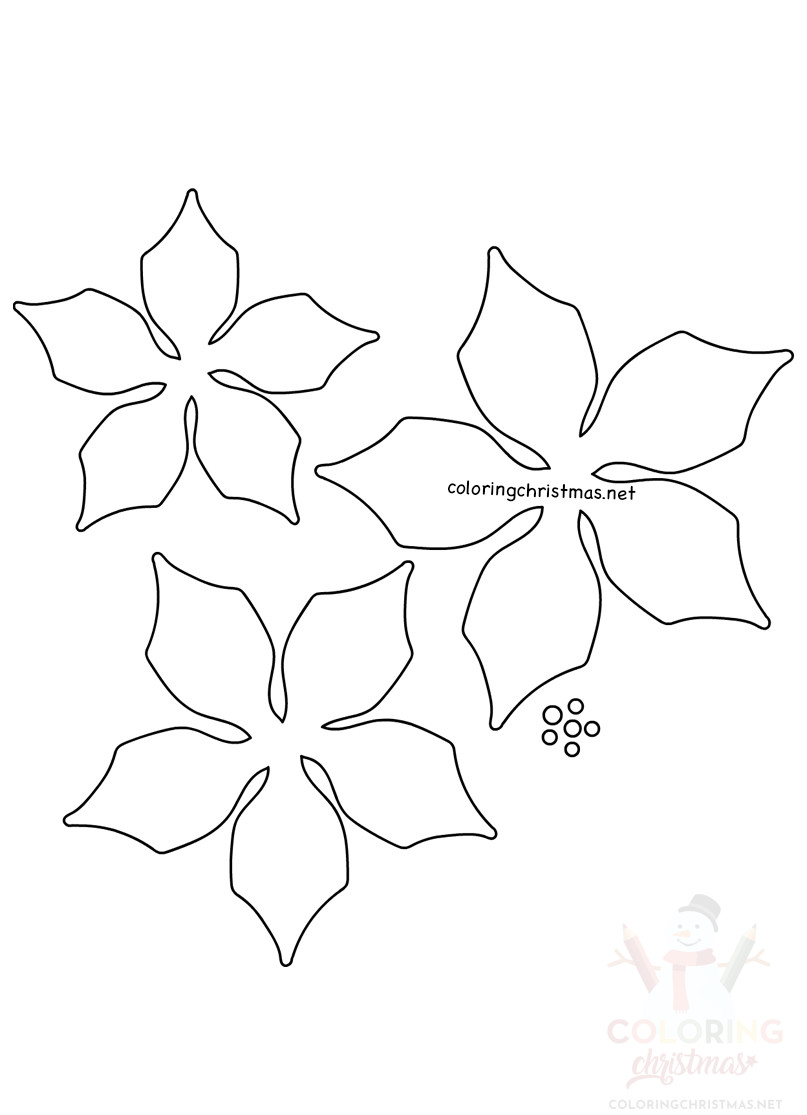 Easy Paper Poinsettia Flowers Template Coloring Christmas